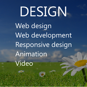 Web Design, development, mobile.