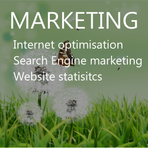 Internet optimisation, internet marketing, social media, website statistics, business pages.